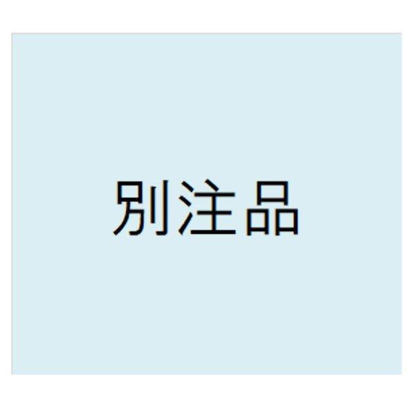 画像1: 別注品 (1)